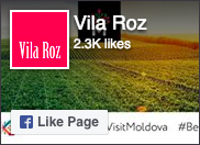 Vila Roz on Facebook